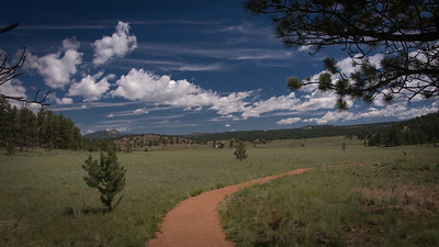 Florissant Fossil Beds 07-15-2014